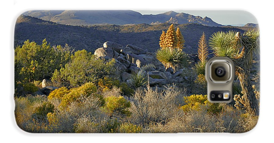 Sunset Galaxy S6 Case featuring the photograph Joshua Tree National Park In California by Christine Till