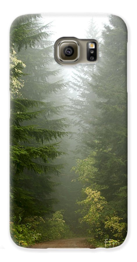 Forest Galaxy S6 Case featuring the photograph Journey Through The Fog by Idaho Scenic Images Linda Lantzy