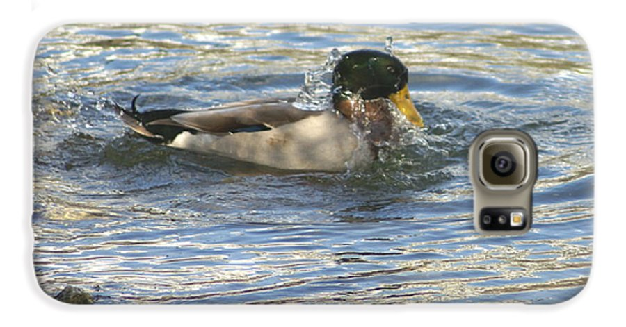 Ducks Galaxy S6 Case featuring the photograph Just Ducking Around by Debbie May