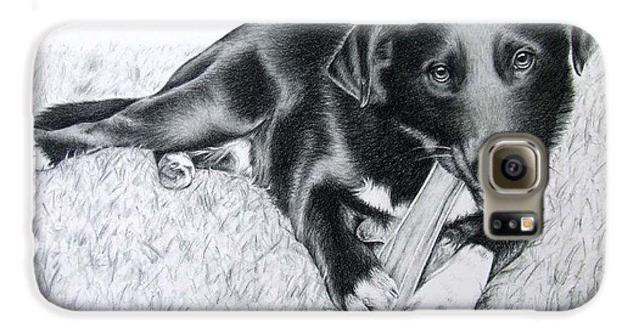 Dog Galaxy S6 Case featuring the drawing Labrador Samy by Nicole Zeug