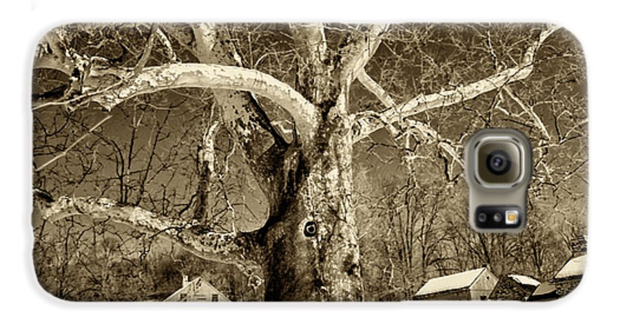 Sycamore Tree Galaxy S6 Case featuring the photograph Lafayette Headquarters by Jack Paolini