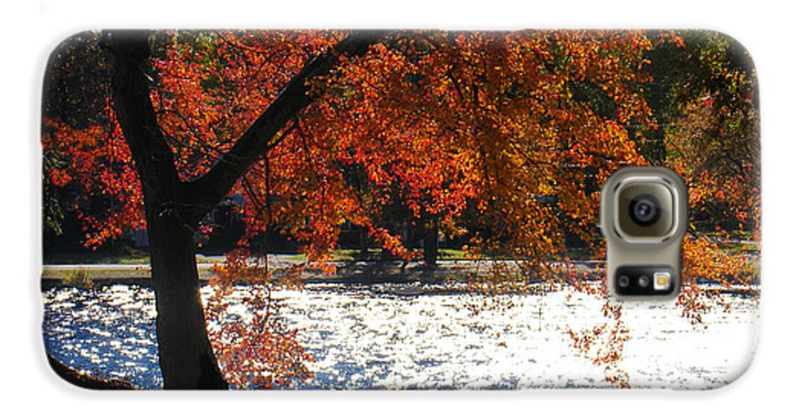 Landscape Galaxy S6 Case featuring the photograph Lakewood by Steve Karol