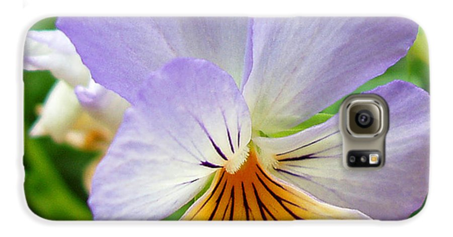 Pansy Galaxy S6 Case featuring the photograph Lavender Pansy by Nancy Mueller