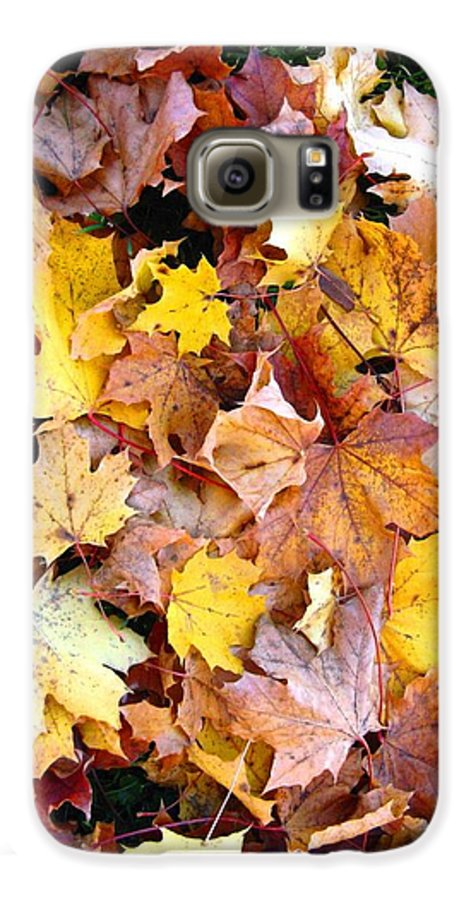 Leaves Galaxy S6 Case featuring the photograph Leaves Of Fall by Rhonda Barrett