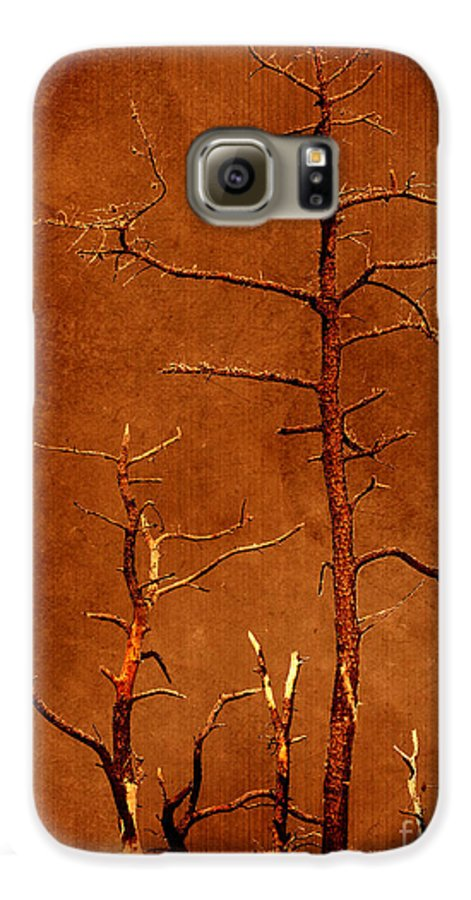Dipasquale Galaxy S6 Case featuring the photograph Left Bare And Broken by Dana DiPasquale