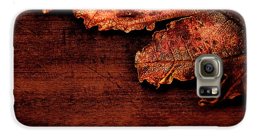 Red Galaxy S6 Case featuring the photograph Let Me Hold You... by Dana DiPasquale