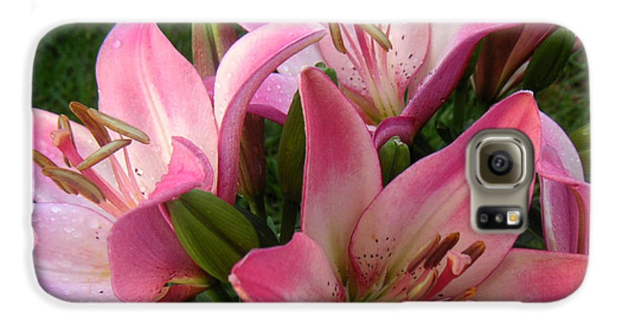 Nature Galaxy S6 Case featuring the photograph Lilies In Company by Lucyna A M Green