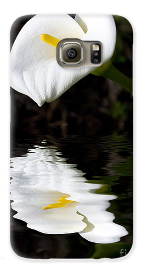 Lily Reflection Flora Flower Galaxy S6 Case featuring the photograph Lily Reflection by Sheila Smart Fine Art Photography
