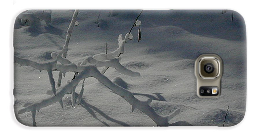 Loneliness Galaxy S6 Case featuring the photograph Loneliness In The Cold by Douglas Barnett