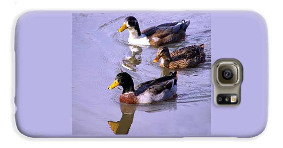 Duck Galaxy S6 Case featuring the photograph Mallards by Kenna Westerman