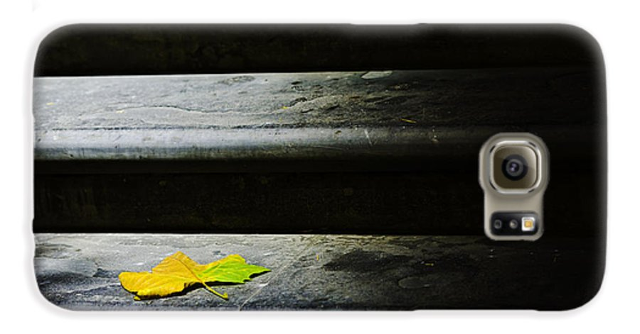 Maple Leaf Galaxy S6 Case featuring the photograph Maple Leaf On Step by Avalon Fine Art Photography