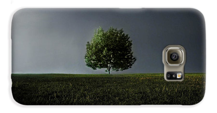 Blue Galaxy S6 Case featuring the photograph Maybe This Year Will Be Better Than The Last by Dana DiPasquale