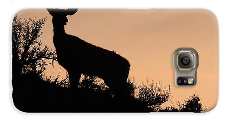 Deer Galaxy S6 Case featuring the photograph Mule Deer Silhouetted Against Sunset Ridge by Max Allen