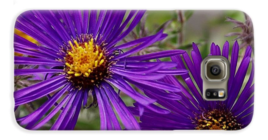 Plant Galaxy S6 Case featuring the painting My Purple Ways by Debbie May