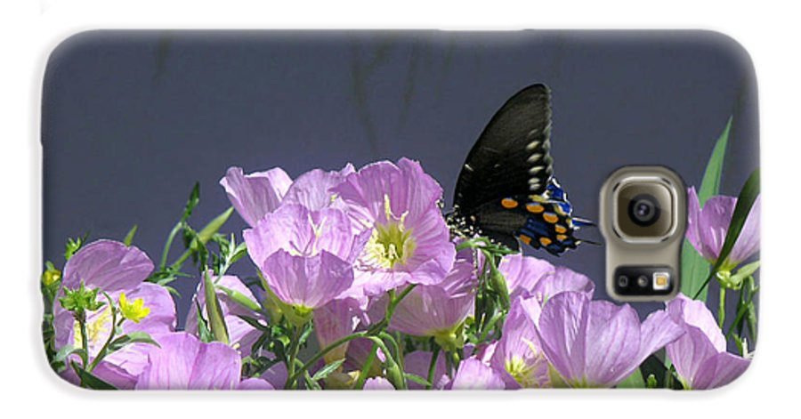 Nature Galaxy S6 Case featuring the photograph Nature In The Wild - Profiles By A Stream by Lucyna A M Green