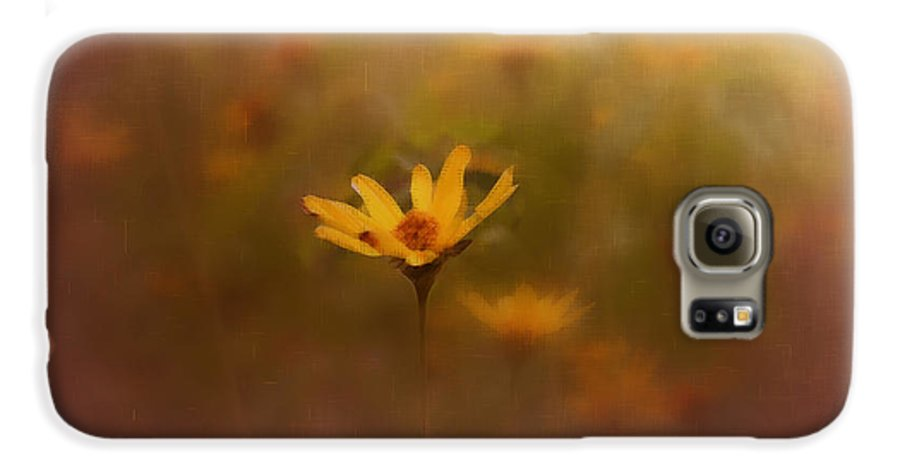Nature Galaxy S6 Case featuring the photograph Nature by Linda Sannuti
