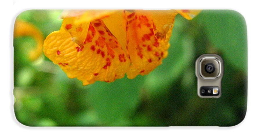Flower Galaxy S6 Case featuring the photograph Orange Flower by Melissa Parks
