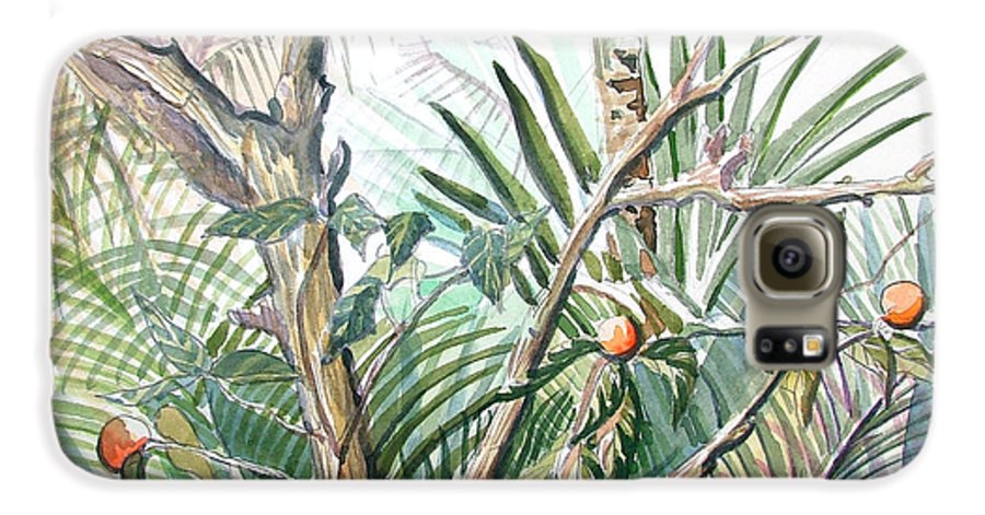 Fruit Galaxy S6 Case featuring the painting Orange Tree by Mindy Newman