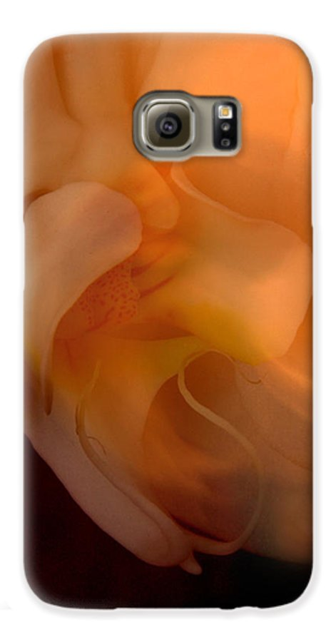 Orchid Galaxy S6 Case featuring the photograph Orchid Detail by Michael Ziegler
