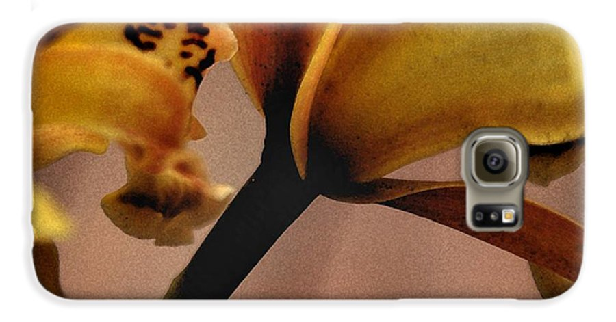 Orchid Galaxy S6 Case featuring the photograph Orchid Yellow by Michael Ziegler