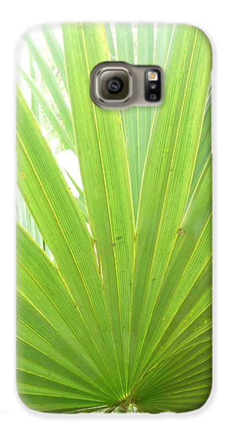 Green Galaxy S6 Case featuring the photograph Palmetto by Kathy Schumann