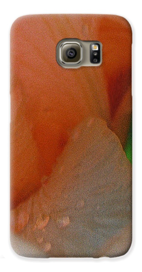 Abstract Galaxy S6 Case featuring the photograph Panel One From Iris by Steve Karol