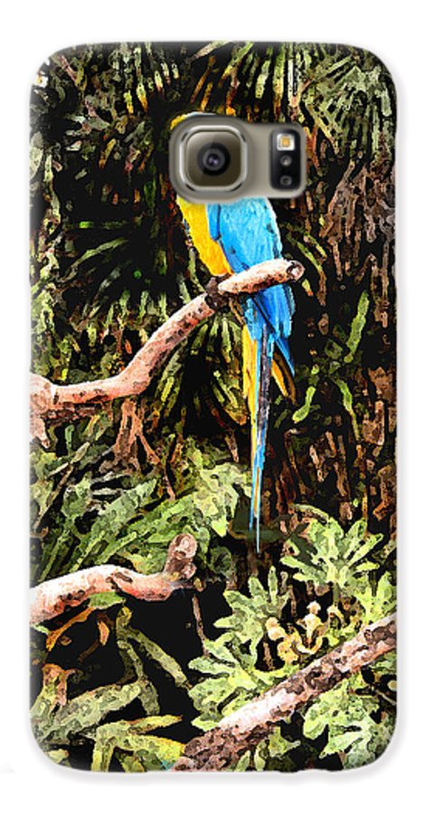 Parrot Galaxy S6 Case featuring the photograph Parrot by Steve Karol