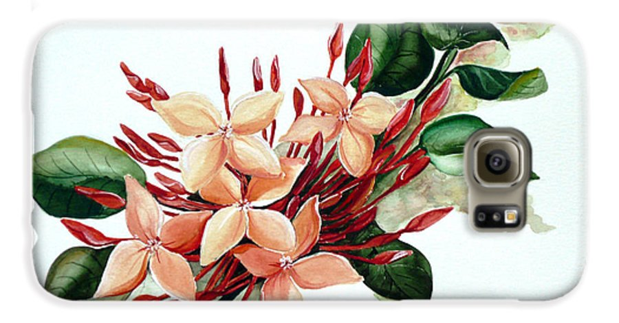 Floral Peach Flower Watercolor Ixora Botanical Bloom Galaxy S6 Case featuring the painting Peachy Ixora by Karin Dawn Kelshall- Best