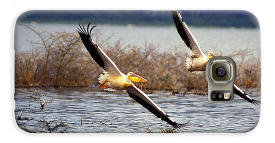 Birds Galaxy S6 Case featuring the photograph Pelicans In Flight by Carl Purcell