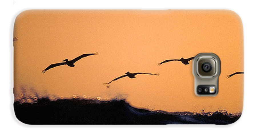 Pelicans Galaxy S6 Case featuring the photograph Pelicans Over The Pacific by Michael Mogensen