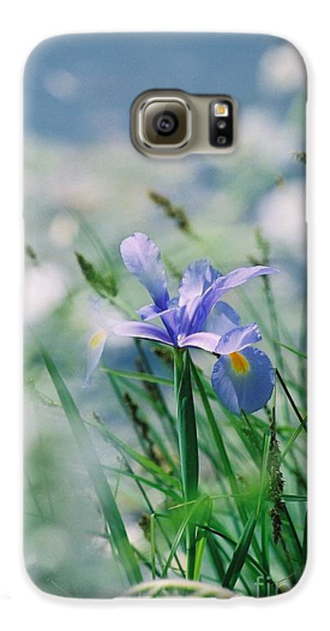 Periwinkle Galaxy S6 Case featuring the photograph Periwinkle Iris by Nadine Rippelmeyer