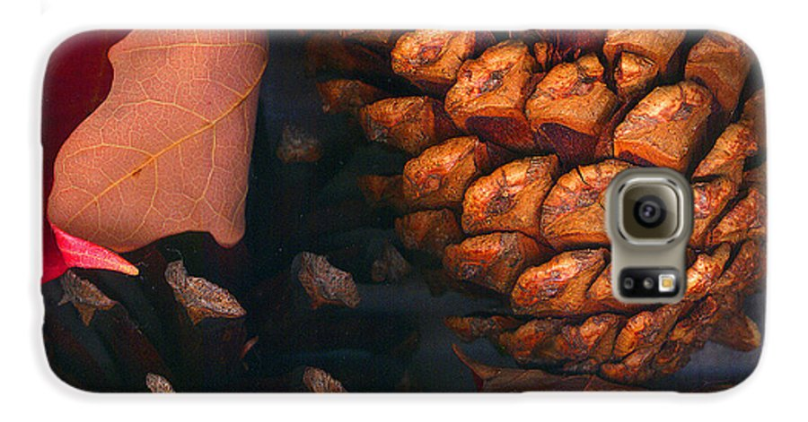 Pine Cones Galaxy S6 Case featuring the photograph Pine Cones And Leaves by Nancy Mueller