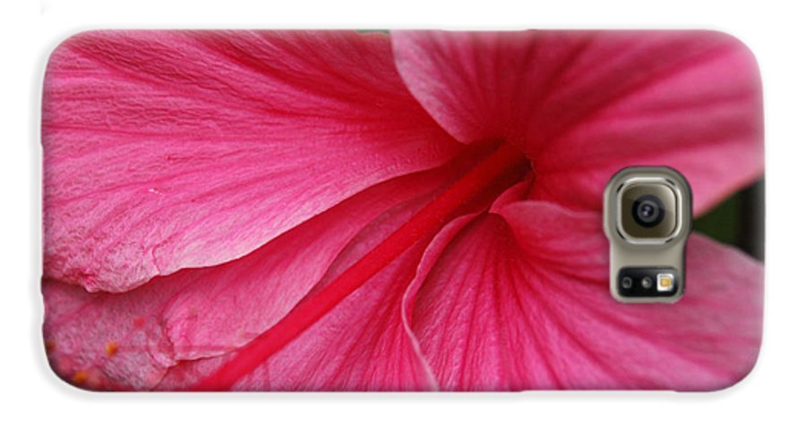 Pink Galaxy S6 Case featuring the photograph Pink Hibiscus by Kathy Schumann