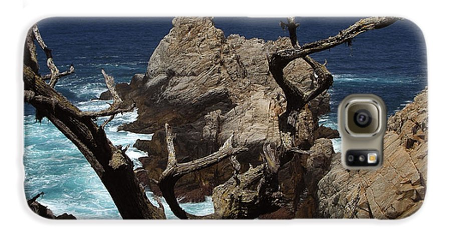 Carmel Galaxy S6 Case featuring the photograph Point Lobos Rocks And Branches by Charlene Mitchell