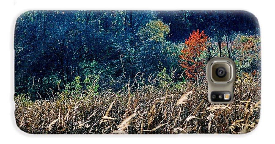 Landscape Galaxy S6 Case featuring the photograph Prairie Edge by Steve Karol