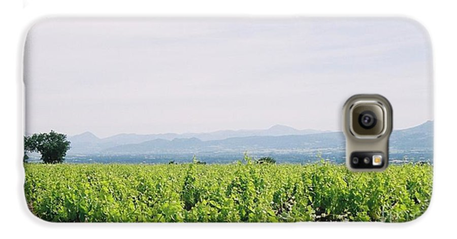 France Galaxy S6 Case featuring the photograph Provence Spring Vineyard by Nadine Rippelmeyer