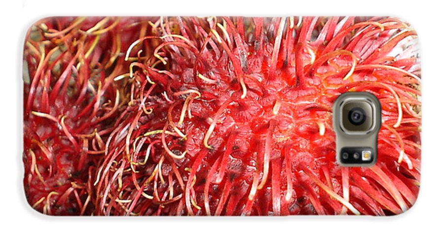 Fruit Close Up Galaxy S6 Case featuring the photograph Rambutan by Chandelle Hazen