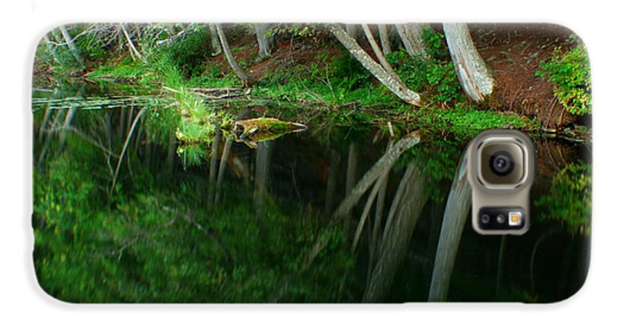 Forest Galaxy S6 Case featuring the photograph Reflections Of A Forest by Idaho Scenic Images Linda Lantzy