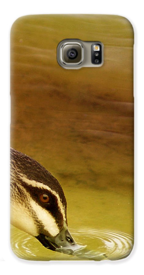 Animals Galaxy S6 Case featuring the photograph Ripples by Holly Kempe