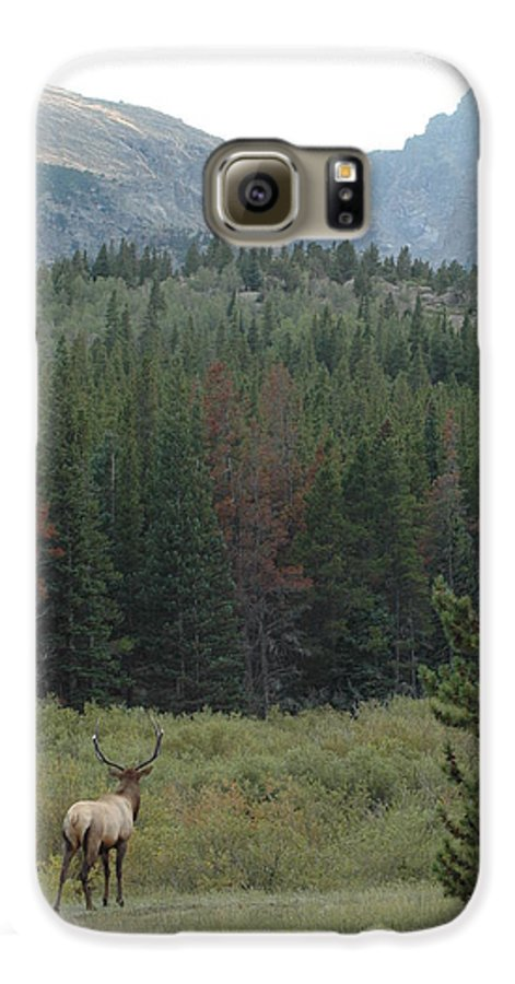 Elk Galaxy S6 Case featuring the photograph Rocky Mountain Elk by Kathy Schumann