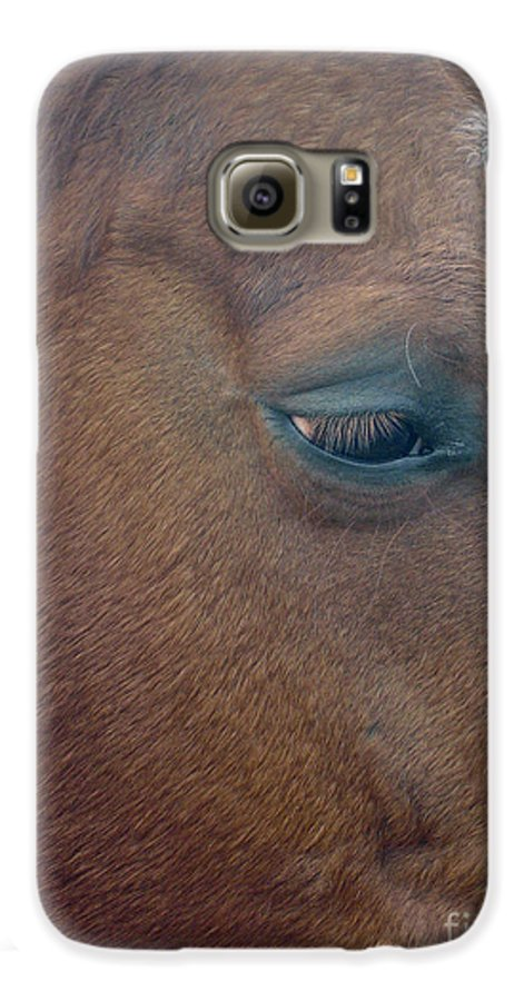 Horse Galaxy S6 Case featuring the photograph Sad Eyed by Shelley Jones
