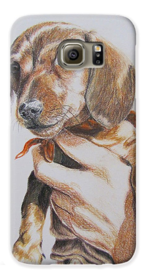 Puppy Galaxy S6 Case featuring the drawing Sambo by Karen Ilari