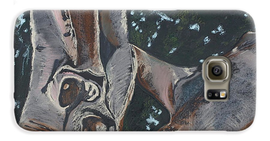 Contemporary Tree Galaxy S6 Case featuring the drawing San Diego Zoo by Leah Tomaino
