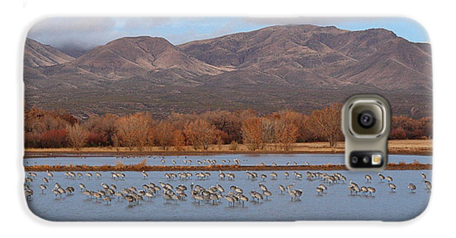 Sandhill Crane Galaxy S6 Case featuring the photograph Sandhill Cranes Beneath The Mountains Of New Mexico by Max Allen