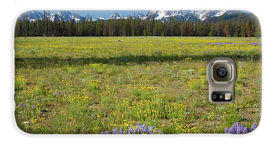 Wildflowers Galaxy S6 Case featuring the photograph Sawtooths And Wildflowers by Idaho Scenic Images Linda Lantzy