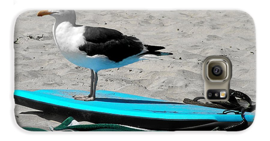 Bird Galaxy S6 Case featuring the photograph Seagull On A Surfboard by Christine Till