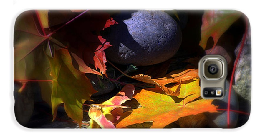 Leaves Galaxy S6 Case featuring the photograph Seed by Larry Keahey
