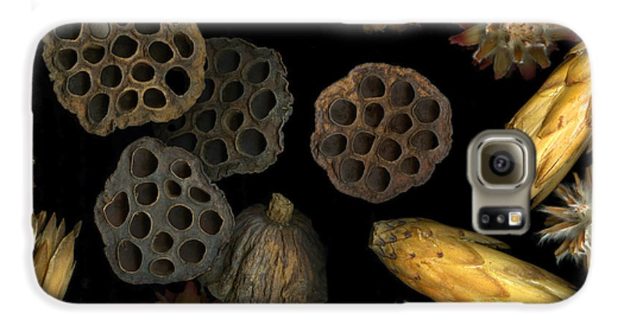 Pods Galaxy S6 Case featuring the photograph Seeds And Pods by Christian Slanec