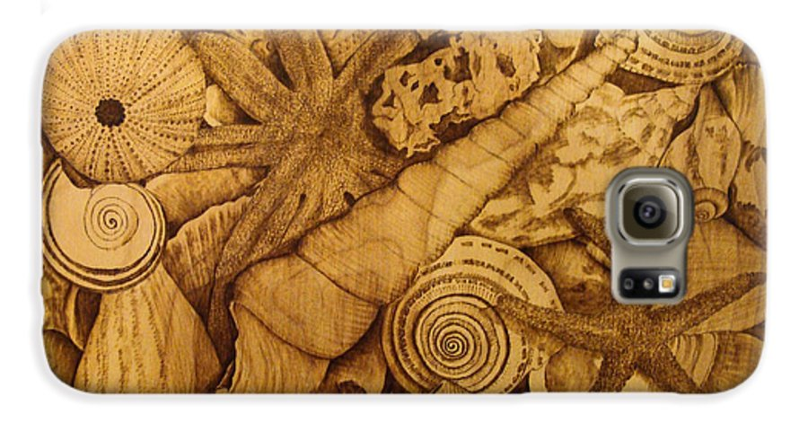 Pyrography; Sepia; Shells; Sea Shells; Starfish; Ocean; Sea; Underwater; Sea Life; Galaxy S6 Case featuring the pyrography Settled by Jo Schwartz