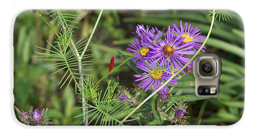 Floral Galaxy S6 Case featuring the painting Shades Of Lavendar by Debbie May